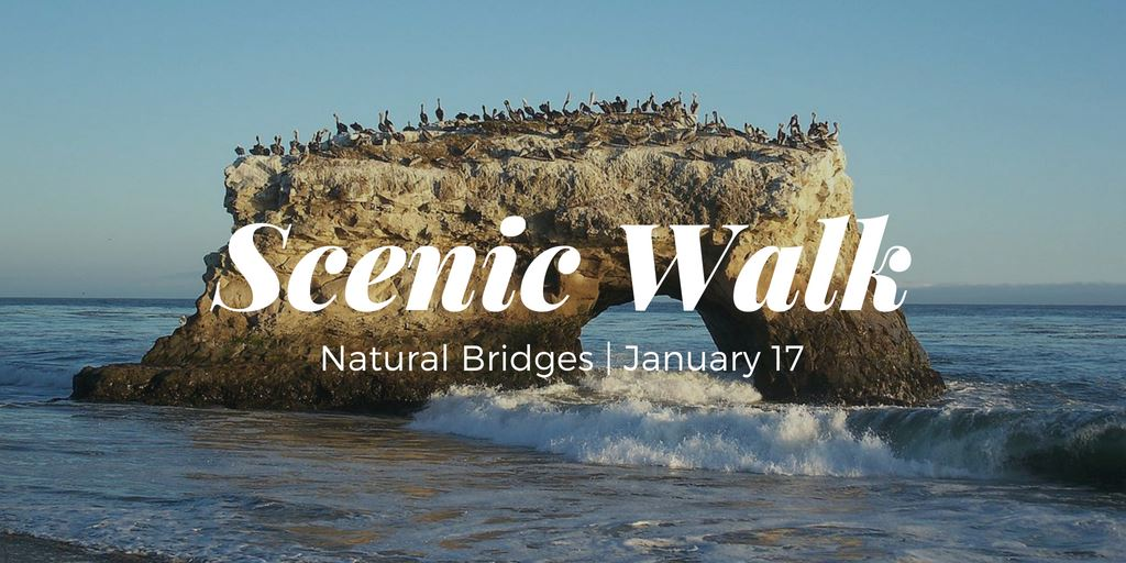 Scenic Walk 2019 banner with image of Natural Bridges