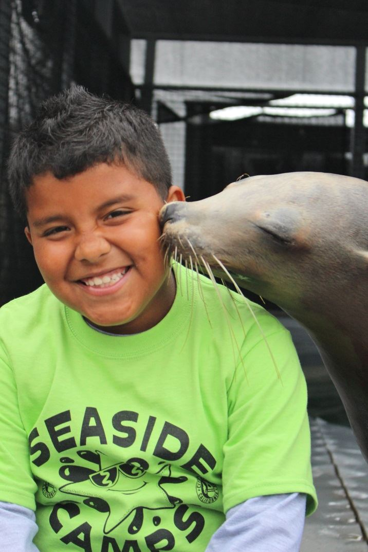 Young Boy Being Kissed by a Seal
