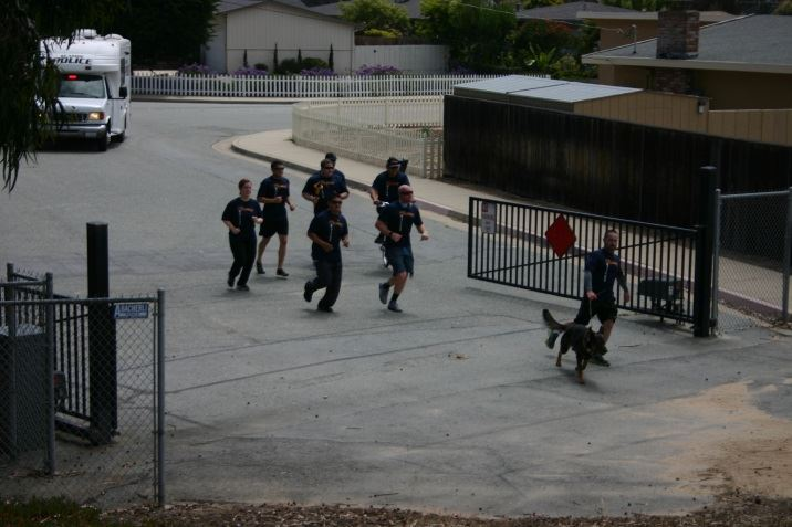 Group of Officers and canine Running Through an Open Gate