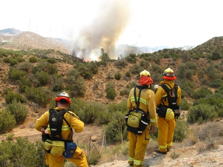 Firefighters Managing the Jawbone Fire