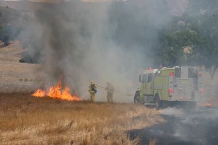 Firefighters Controlling a Field Fire