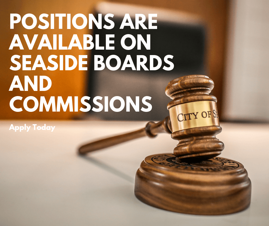Positions are Available on Seaside Boards and Commissions -_1