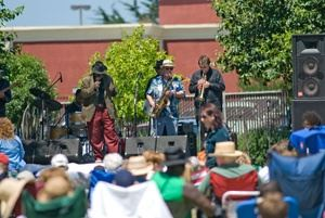 Blues in the Park